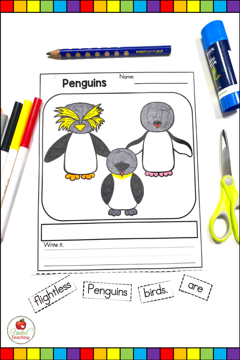 Polar Animals Sentence Building