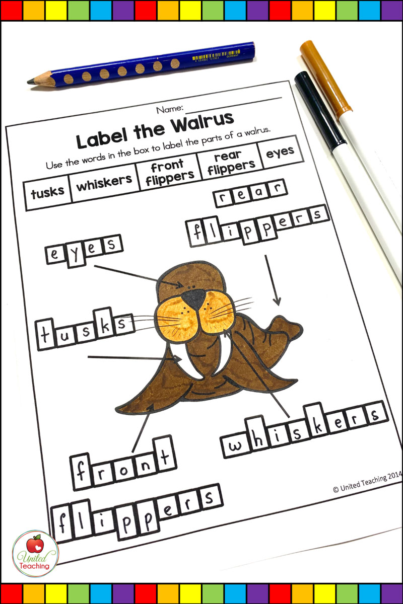Polar Animal Labeling Activities