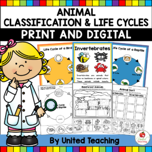 animal-classification-activities